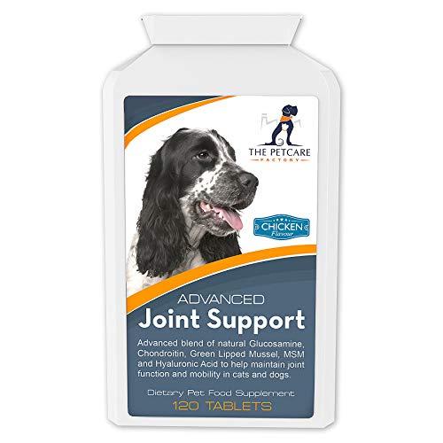 Advanced Joint Support – ein hochentwickeltes Ergänzungsmittel zur Gelenkunterstützung für Hunde, hochwirksam mit Glucosamin, Chondroitin, Grünlippmuschel, MSM, Curcumin & Hyaluronsäure, Inhaltsstoffe mit menschlicher Qualitätsstufe, 120 Tabletten, hergestellt in Großbritannien