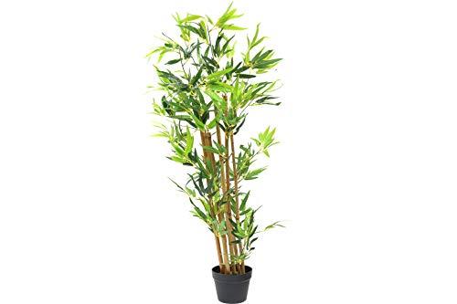 Tradix GmbH & Co. KG Deko Pflanze Bambus mit echten Stämmchen im Topf 130 cm