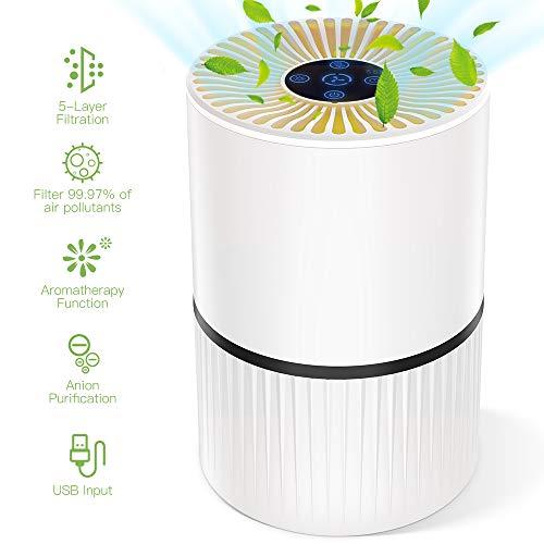 Luftreiniger mit HEPA Filter und Ionisator, Duomishu Air Purifier mit Nachtlicht 3 Timer-Funktion 5 Stufen-Filterung für 99,97% Filterleistung, gegen Staub Pollen Geruch, für Allergiker und Raucher