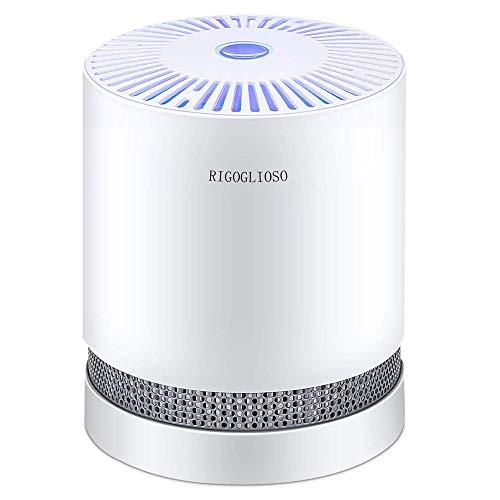 RIGOGLIOSO Luftreiniger Air purifier für zuhause mit echten HEPA Filtern, Desktop Luftreiniger mit LED Allergie Ionen Generator, ohne Ozon, Perfekt gegen Staub- und Haustierallergene, Asthmatiker usw.