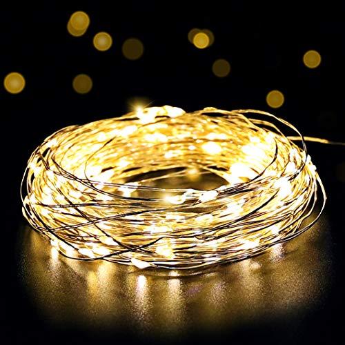 Salcar LED Lichterkette 10 Meter/33Ft 100 Dioden Innen Außen Micro Kupfer Draht für Weihnachten Deko Party Festen, wasserdicht, USB-Anschluss (Warmweiß)