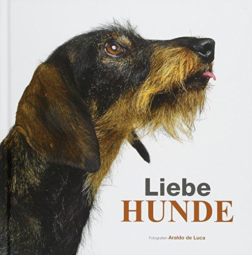 Liebe Hunde: Des Menschen bester Freund in einem unterhaltsamen Bildband mit den schönsten Fotografien von süßen Welpen und lebhaften Hunden