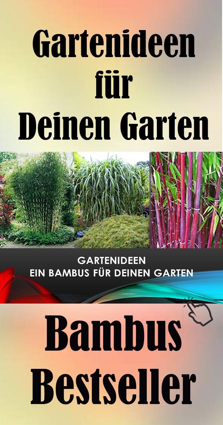 Bambus Bestseller Gartenidee Geschenk Ideen günstig kaufen