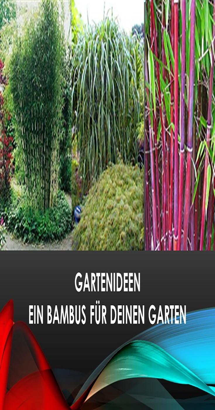 Bambuspflanzen Bestsellerliste zur Gartengestaltung Gartenideen