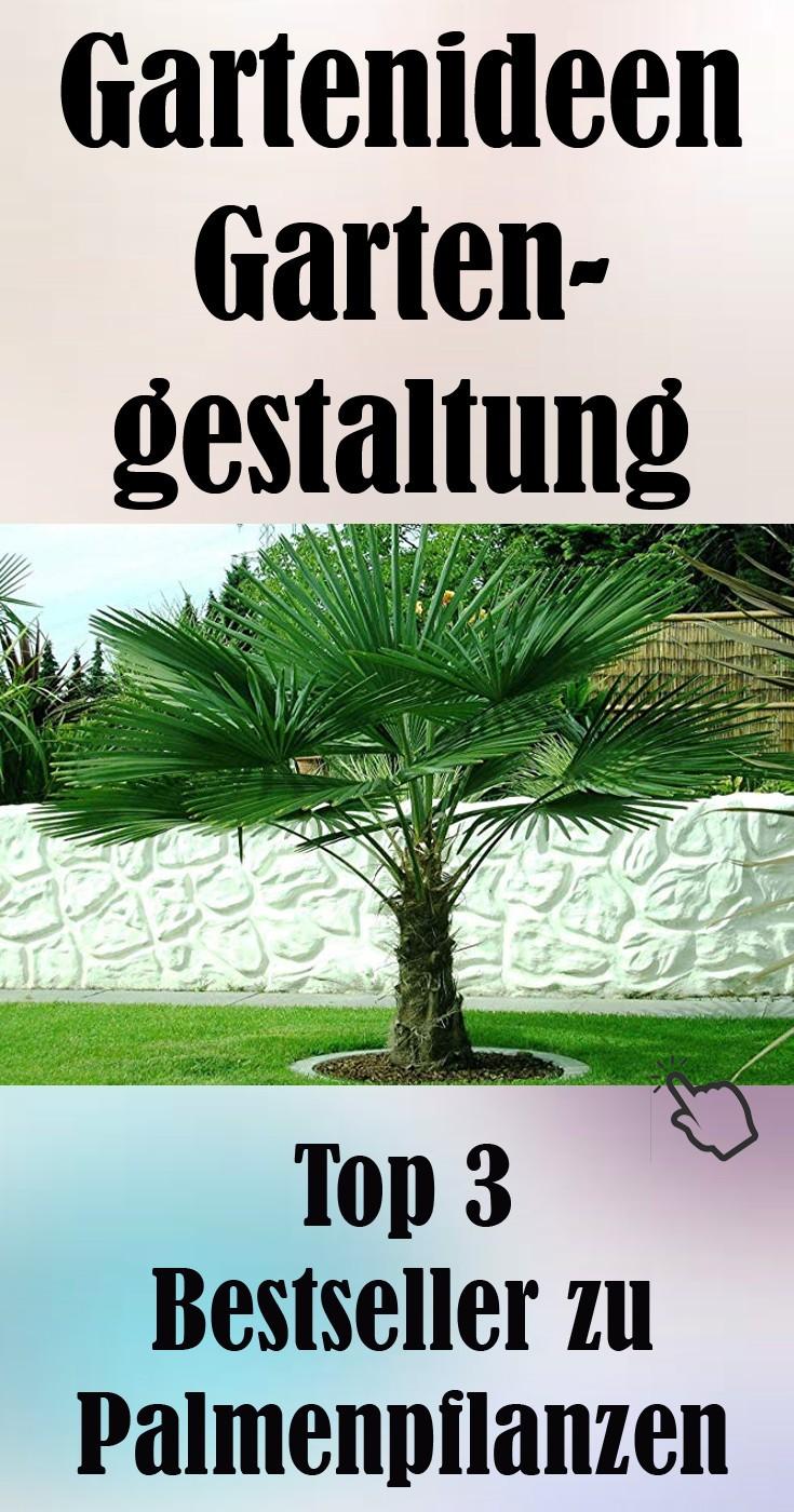 Top 3 Bestseller zu Palmenpflanzen Gartenideen.